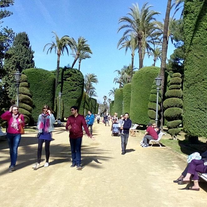 Un paseo por el parque Genovés