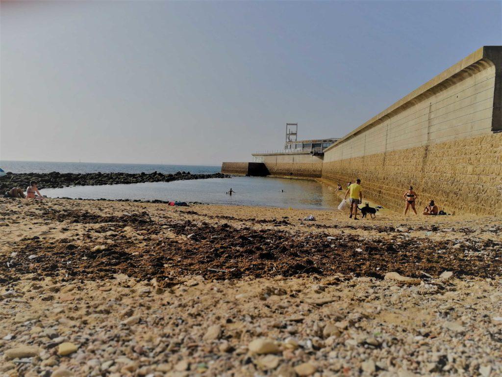 La playa para los perros de Cádiz